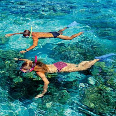 漫步海岛,喝肉骨茶,看海底美景,享受热带雨林的浪漫。